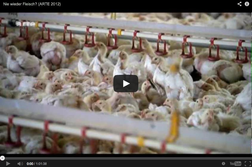 ▶ Nie wieder Fleisch? (ARTE 2012) – YouTube